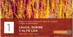 Lauca / Surire