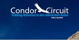 Condor Circuit ebook